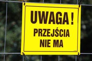 Навчання і освіта в Польщі 2019: як поступити в польський вуз самостійно