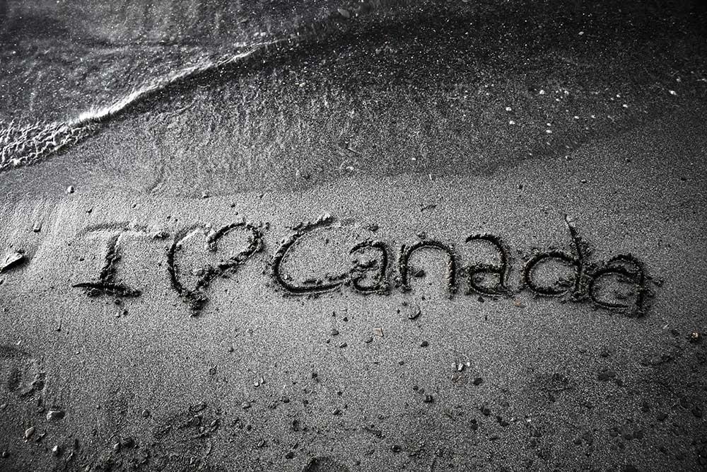 Чим обернеться для українських студентів видворення арабів із канадських вишів