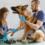 Професія – ветеринар