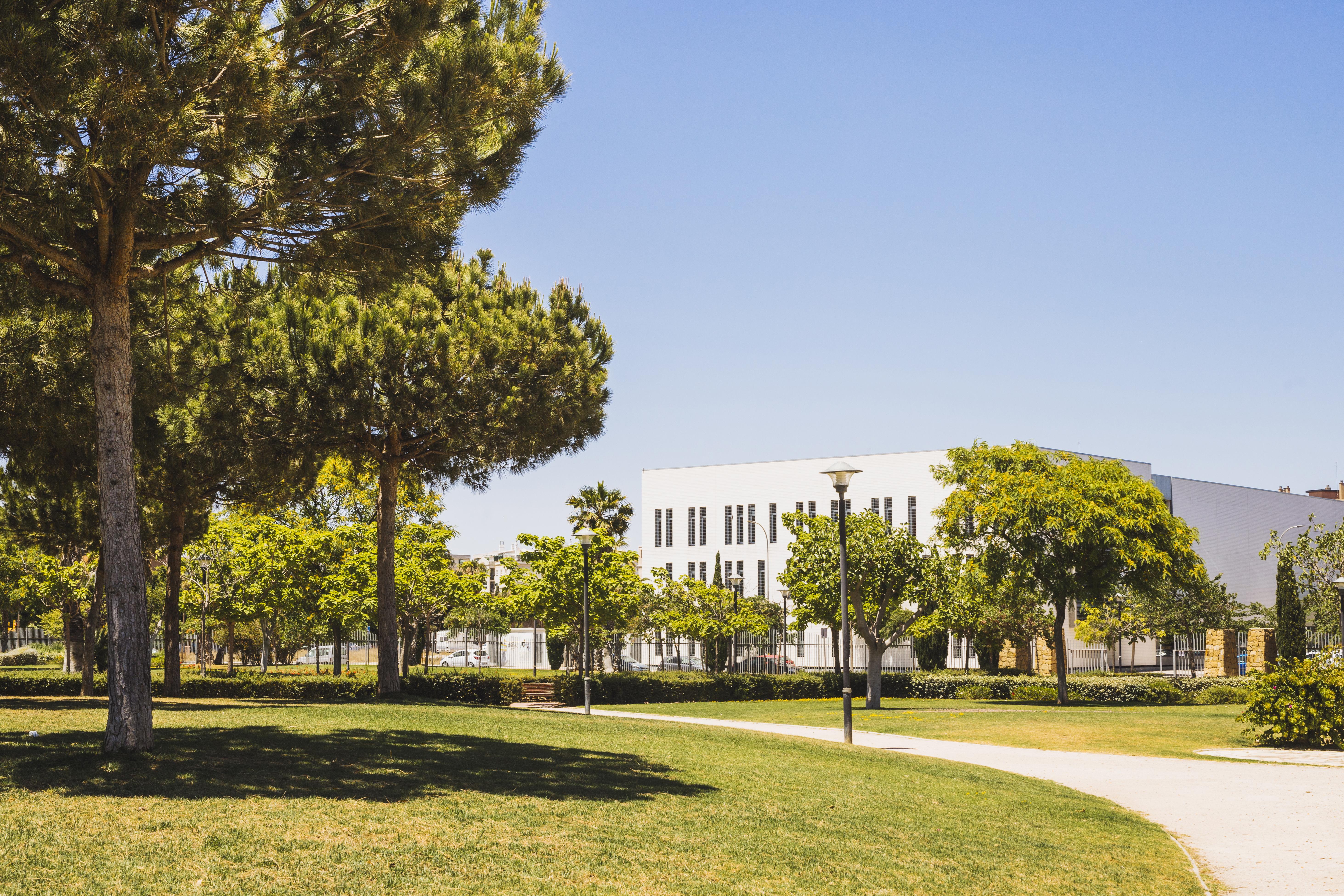 DAAD 2020/2021 – Стипендії для магістерських досліджень
