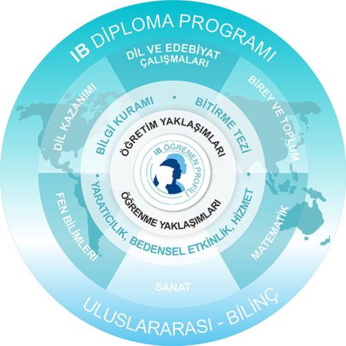 Диплом міжнародного бакалавра (IB) з акцентом на європейські студії в новій школі у Тбілісі, Грузія