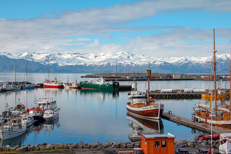 Навчання в Ісландії – як знайти і вступити в університети Ісландії – освіта за кордоном